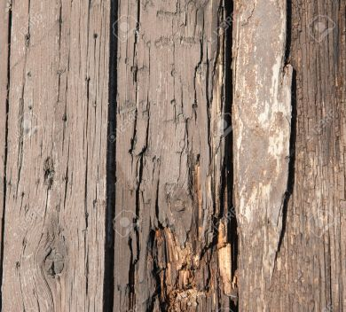 Old rotting wooden planks with woodworm creating abstract background wallpaper